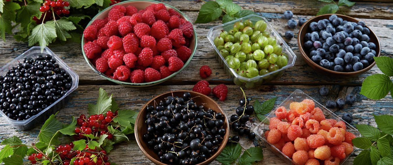 Lage syltetøy av frossen bær