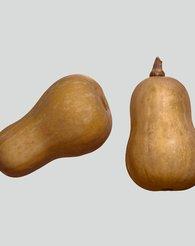 Produktbilde av butternut-gresskar, også kalt flaske-gresskar