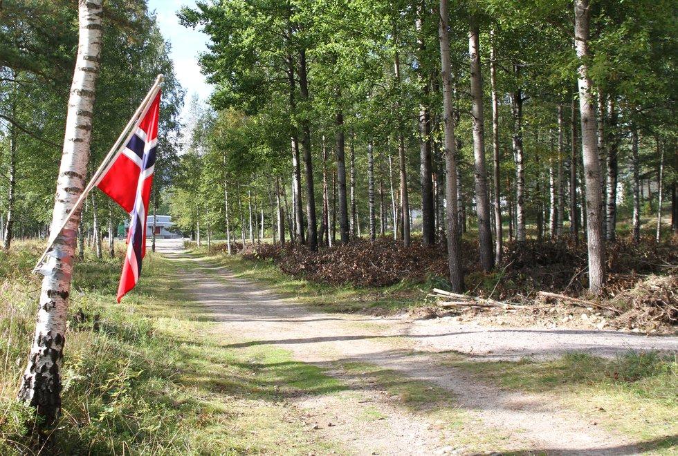Gratulerer med dagen til alle enten du liker å feire med løpetur i skogen, sekkeløp eller grillmat. (Foto: Olav Engen)