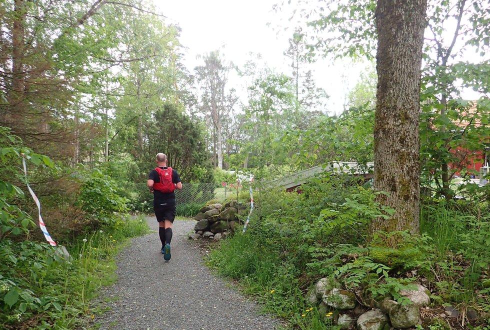 Tretoppsløpet på Jeløya 2019