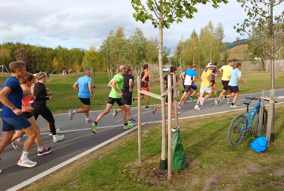 Hamarkarusellen - Mjøsparkløpet