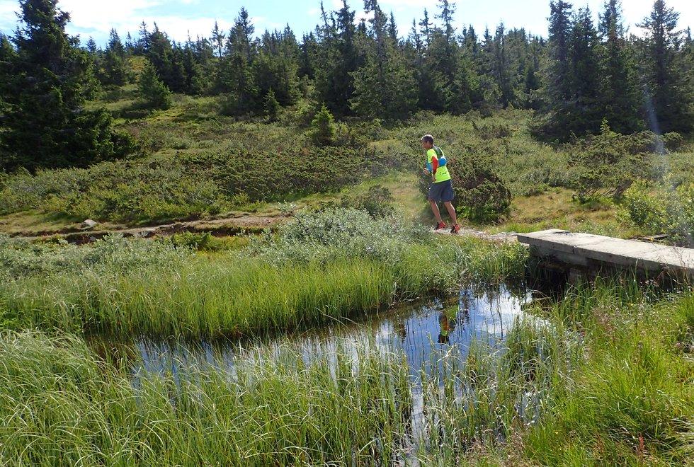 Tim Bennett på Ilsetra løpetur rundt Reinsvatnet