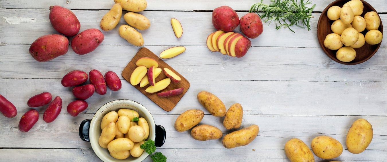 Opplysningskontoret for frukt og grønt - frukt.no - fotograf Marte Garmann