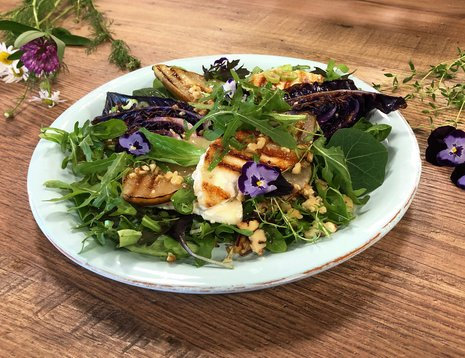 Lun salat med grillet pære, rød spisskål og chèvre