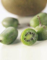 Produktbilde kiwi argula