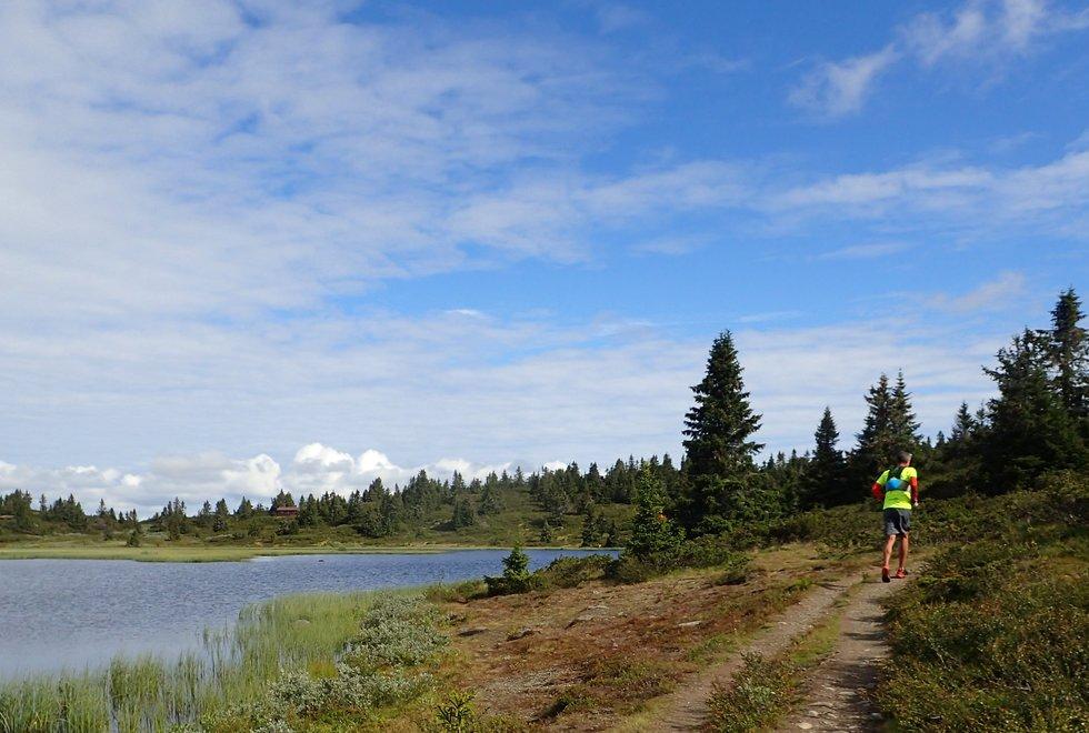 Tim Bennett under en løpetur rundt Reinsvatnet ved Ilsetra. (Foto: Marianne Røhme)