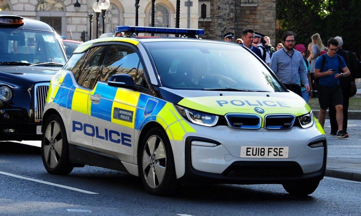 Полицейская Тесла